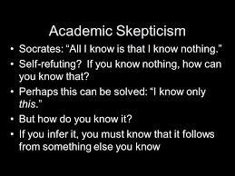academic skep